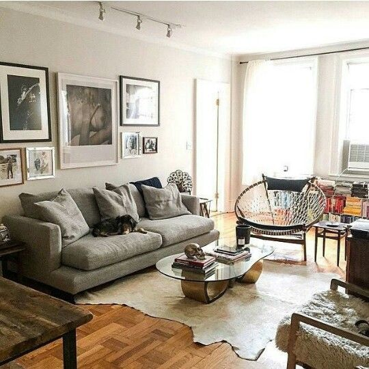Dakota Johnson NYC Apartment. Her Doggie Zeppelin On The