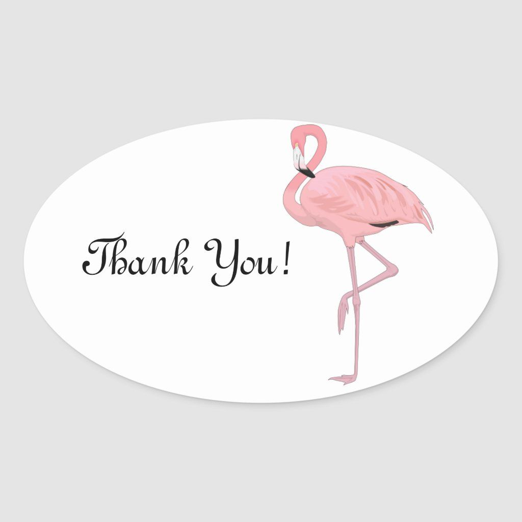 Pink Flamingo Stickers Thank You Zazzle Com In 2021 Pink Flamingos Flamingo Flamingo Pictures [ 1024 x 1024 Pixel ]