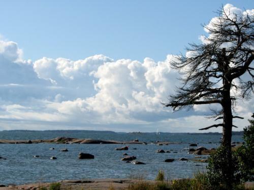 upea syyskuu | Ikkuna Suomen Luontoon