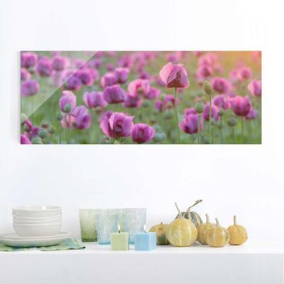Hochauflösende Glasbilder Die etwas anderen Wandbilder aus echtem - glasbilder küche kaffee