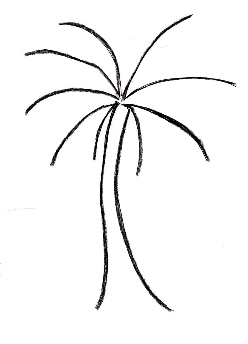 Uncategorized Drawing Of A Palm Tree you can create this palm tree drawing in just four easy steps 1 to