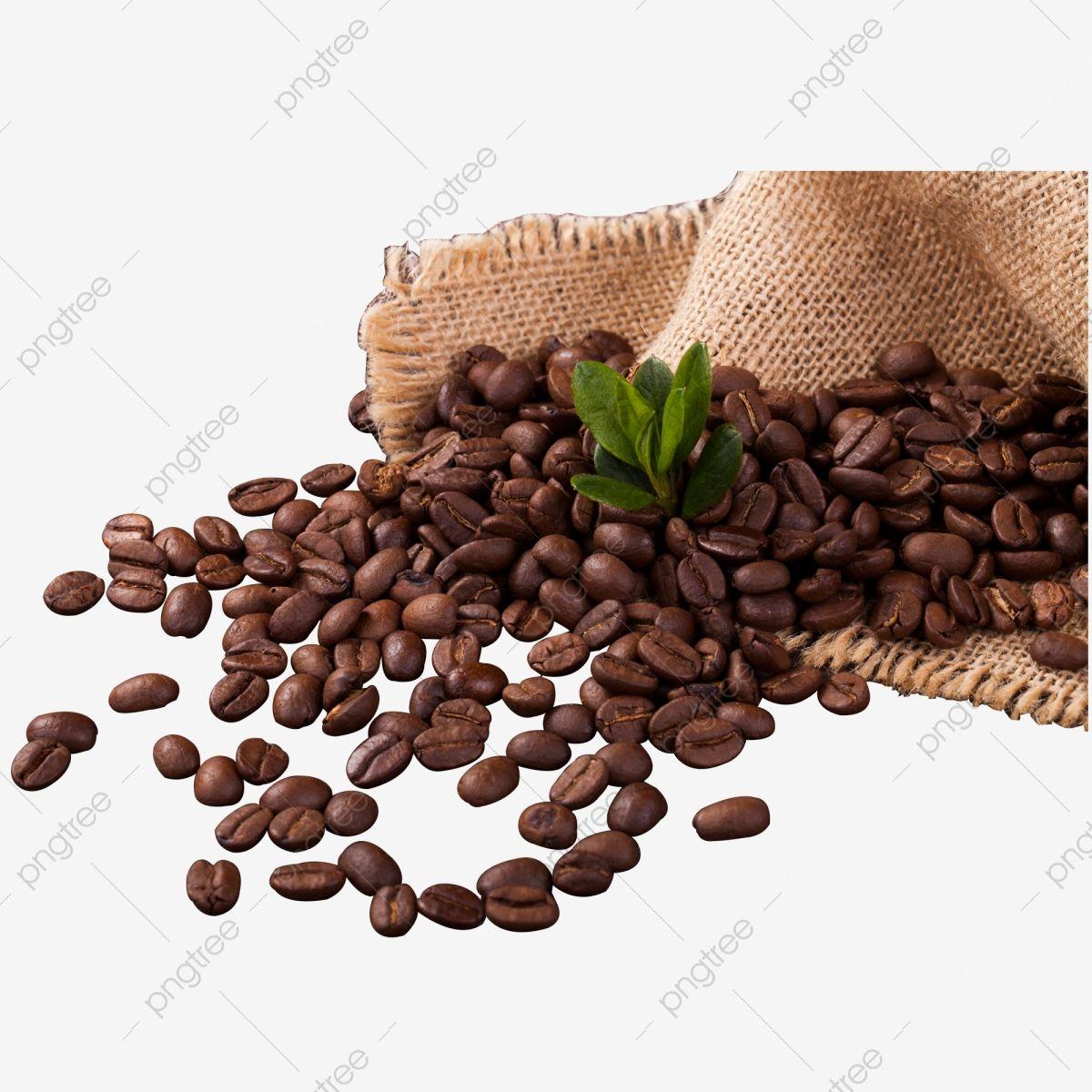 Saco De Tecido Amarelo De Graos De Cafe Graos De Cafe Cafe Cafe Quente Imagem Png E Psd Para Download Gratuito Coffee Beans Raw Coffee Beans Coffee Png