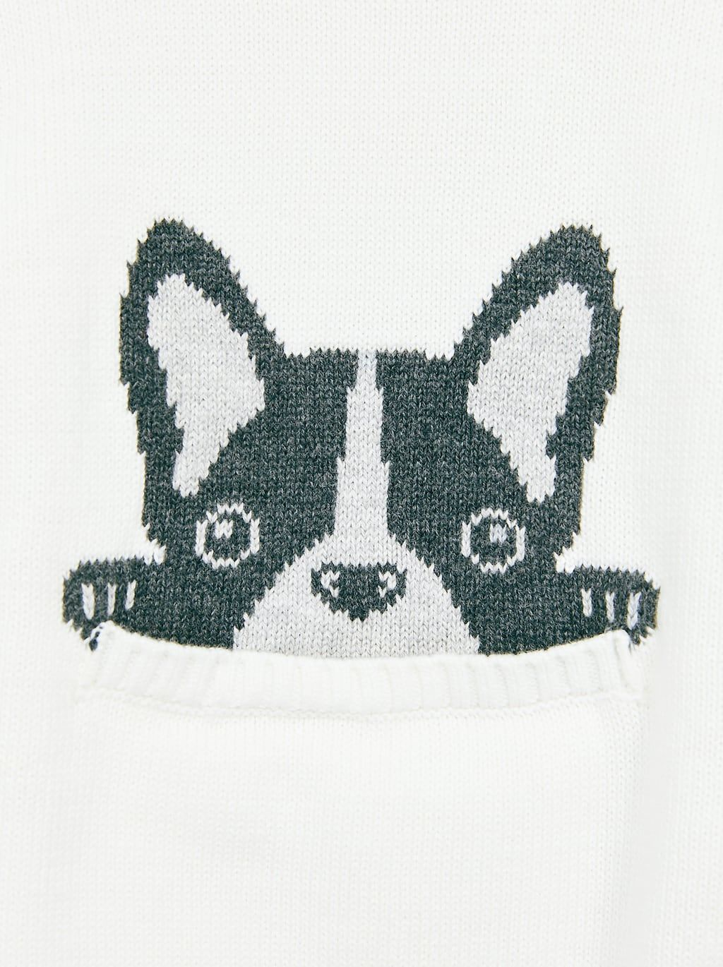 a077b4fbc Image 4 of DOG SWEATER WITH POUCH POCKET from Zara