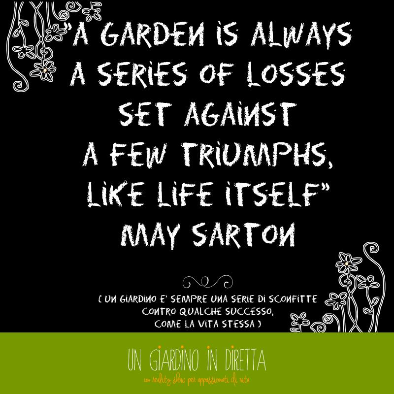 Nuovo Post: la giungla ed una poetessa americana per la to do list della settimana! #todolist #giardino #giardinoindiretta #citazioni
