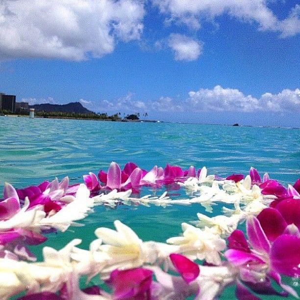 Hawaii Hawaii Oahu Lei Ocean Vacationhawaii Hawaii Hawaii Homes Hawaii Travel