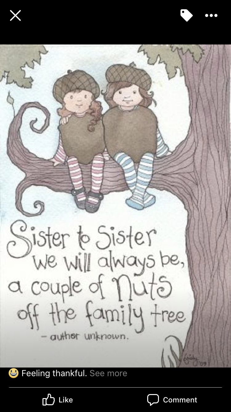 Sister quotes funny by Tressie Akridge on Shiloutte