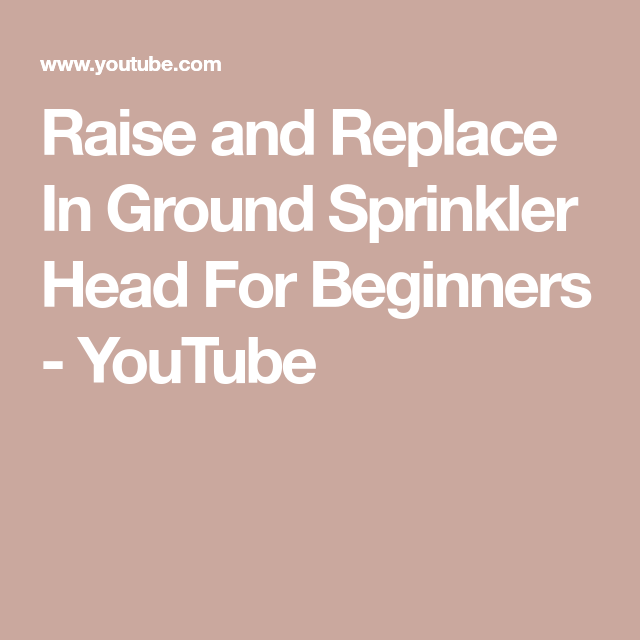 Raise And Replace In Ground Sprinkler Head For Beginners Youtube Sprinkler Heads Sprinkler Beginners