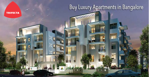 Luxury Residential Apartment For In Whitefield Bangalore Which Suits Living Requirements Trifecta Leading Construction Sector Contact Now