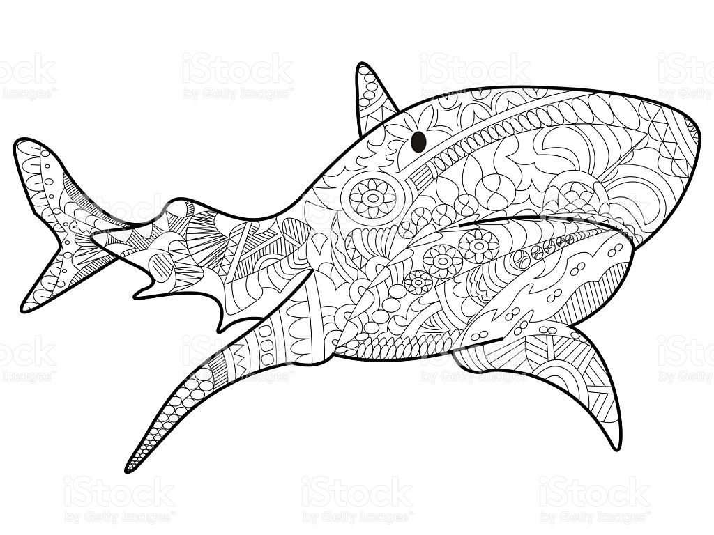 shark sea animal coloring book for adults vector