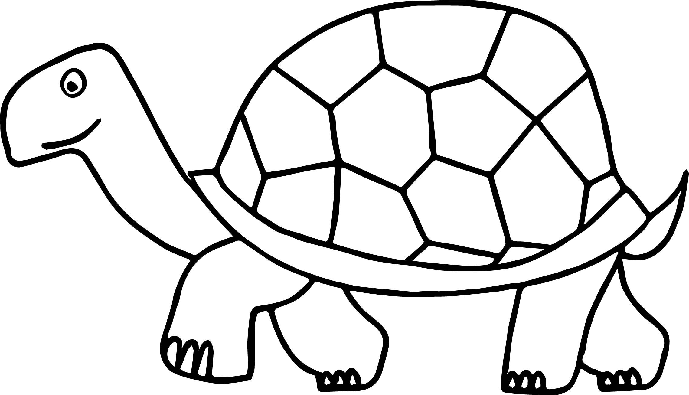 Cool Walking Tortoise Turtle Coloring Page