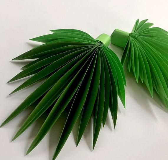 Hojas de papel hojas de verde hojas corte outs paquete de - Plantas de hojas verdes ...