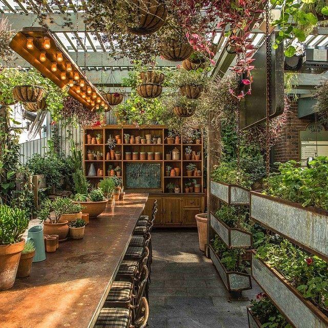 Grounds of Alexandria NSW | outdoor decor | Pinterest | Serre ...