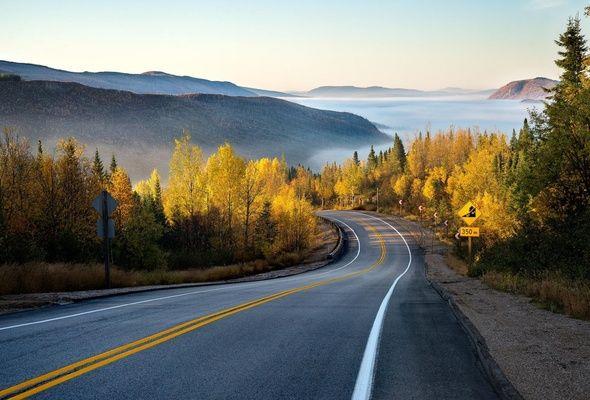Wallpaper road, mountains, forest, mist, autumn, fog