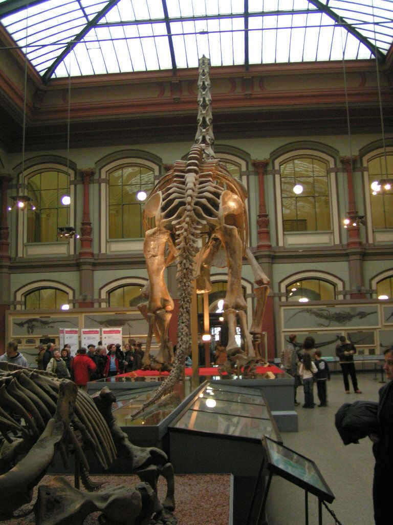 Naturkundemuseum Berlin Preise