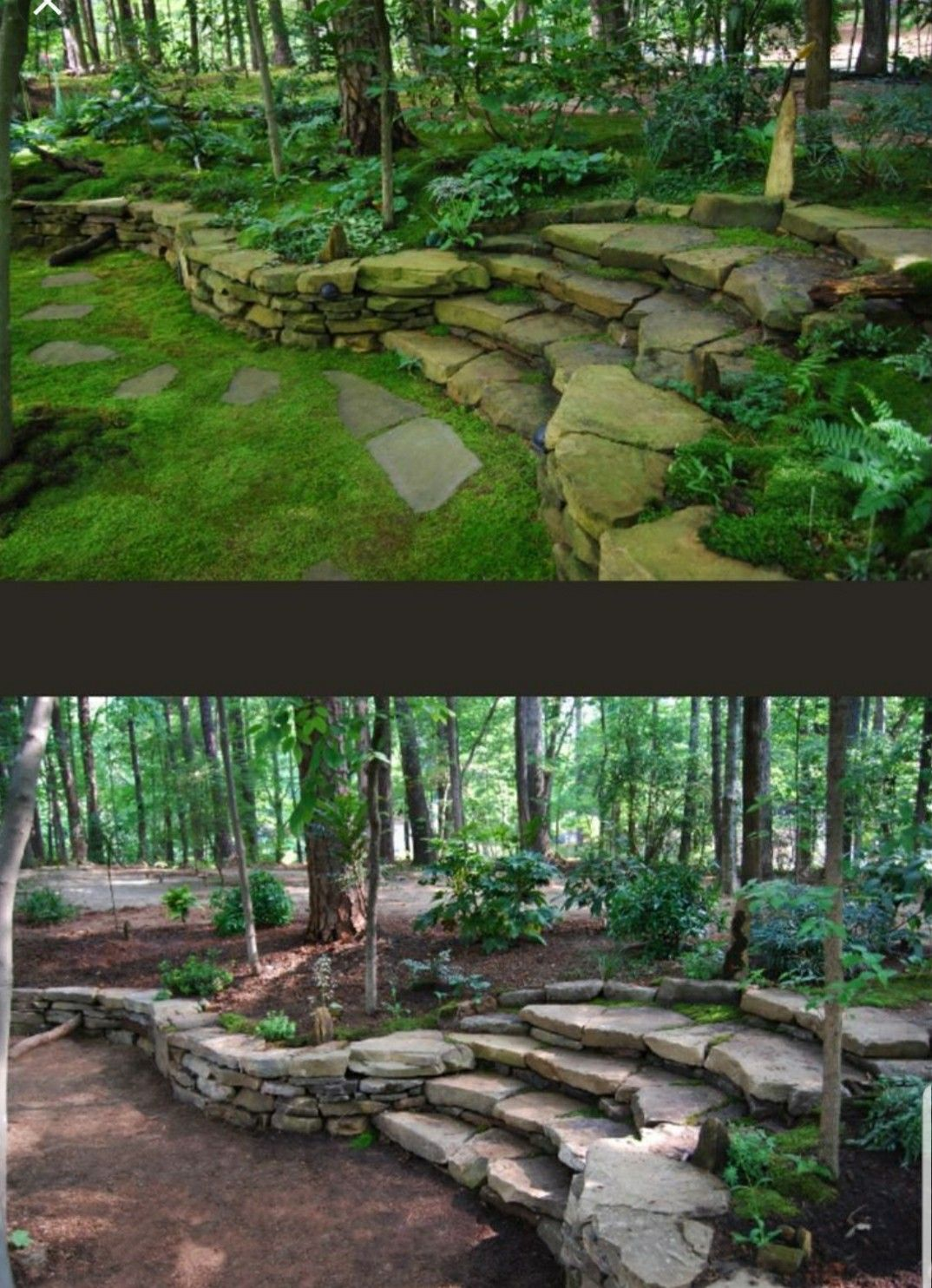 Pin by Bobby Redondo on Landscaping/Rock Garden Ideas ... Ideas For Wooded Backyards on ideas for muddy backyards, ideas for sloping backyards, ideas for sloped backyards,
