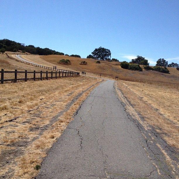 Stanford Dish Trail  Photo by wellnessscience • Instagram