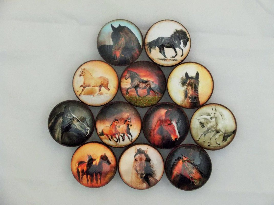 Set Of 12 Wild Horses Cabinet Knobs