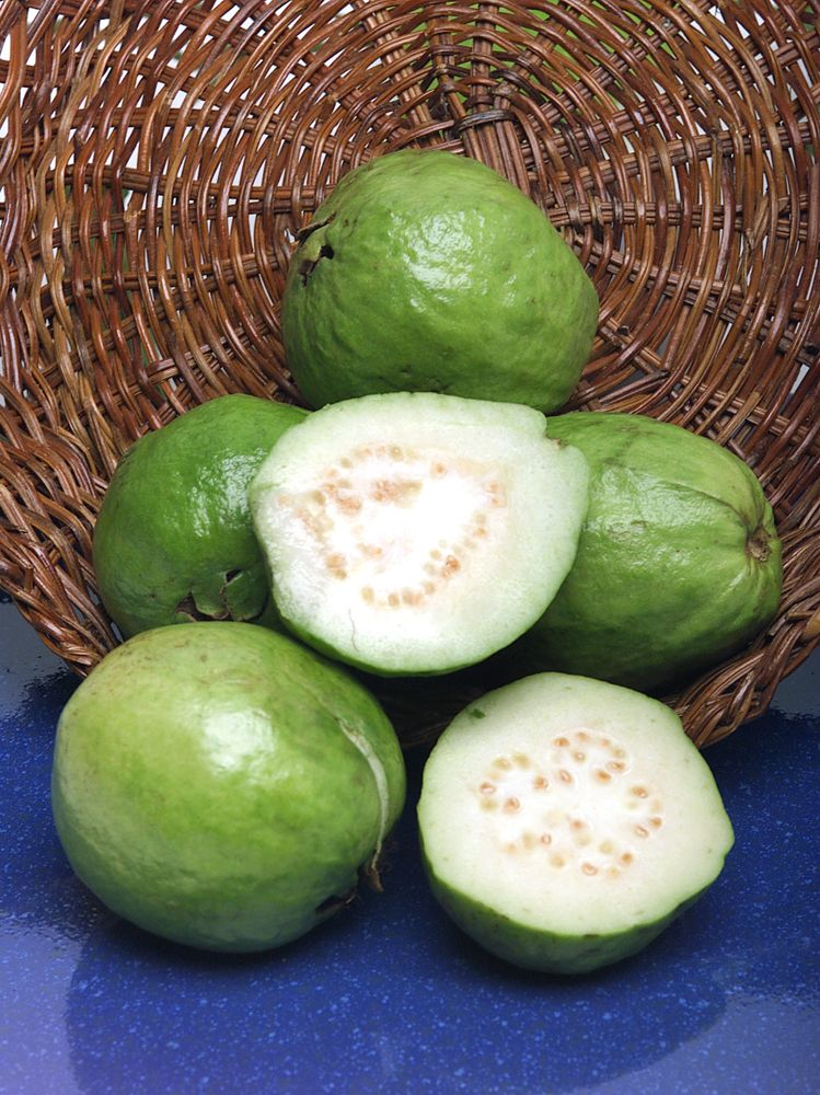 The guava is actually classified as a berry  The edible skin