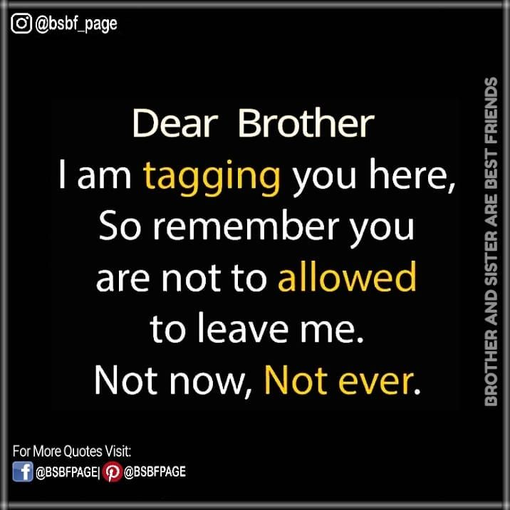 Pin By Priya On Bro And Sis Bff Brother Quotes Brother Brother