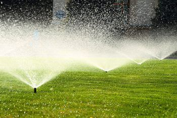 How to Fix Wet Areas in the Lawn | Garden sprinklers, Lawn ...