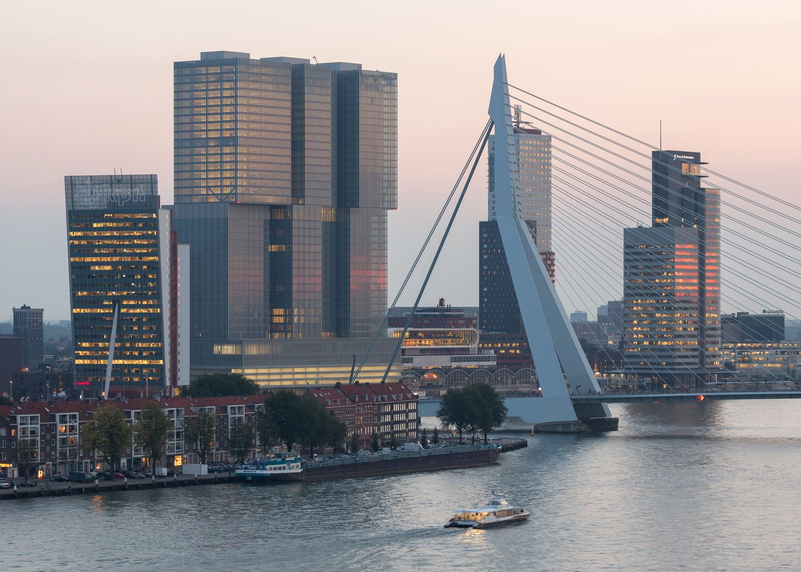 """Rotterdam is """"the city of the future"""" say architects"""