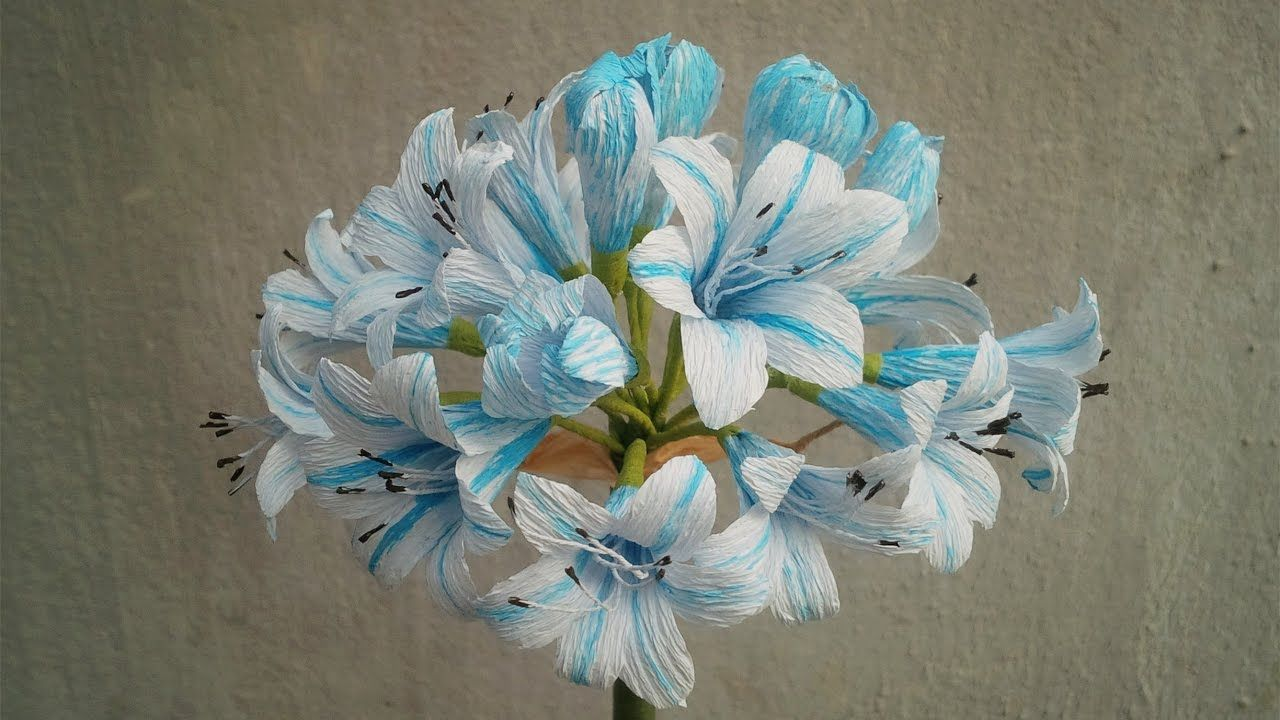 Abc Tv How To Make African Lily Paper Flowers From Crepe Paper