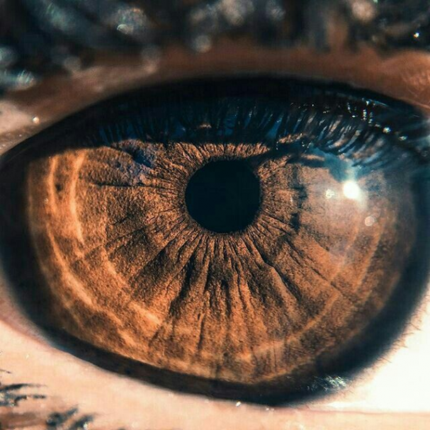 Color Brown Peoplephotography People Photography Colorful In 2020 Brown Eyes Aesthetic Aesthetic Eyes Eye Photography