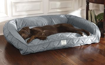 Deep dish dog bed with memory foam