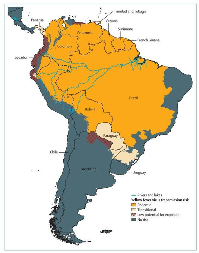 Map South America showing areas at risk for Yellow Fever