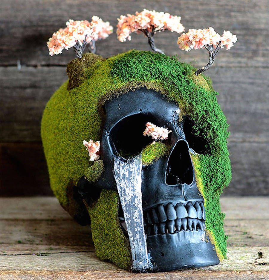 Unique Handmade Bonsai Skulls Bonsai, Real human skull