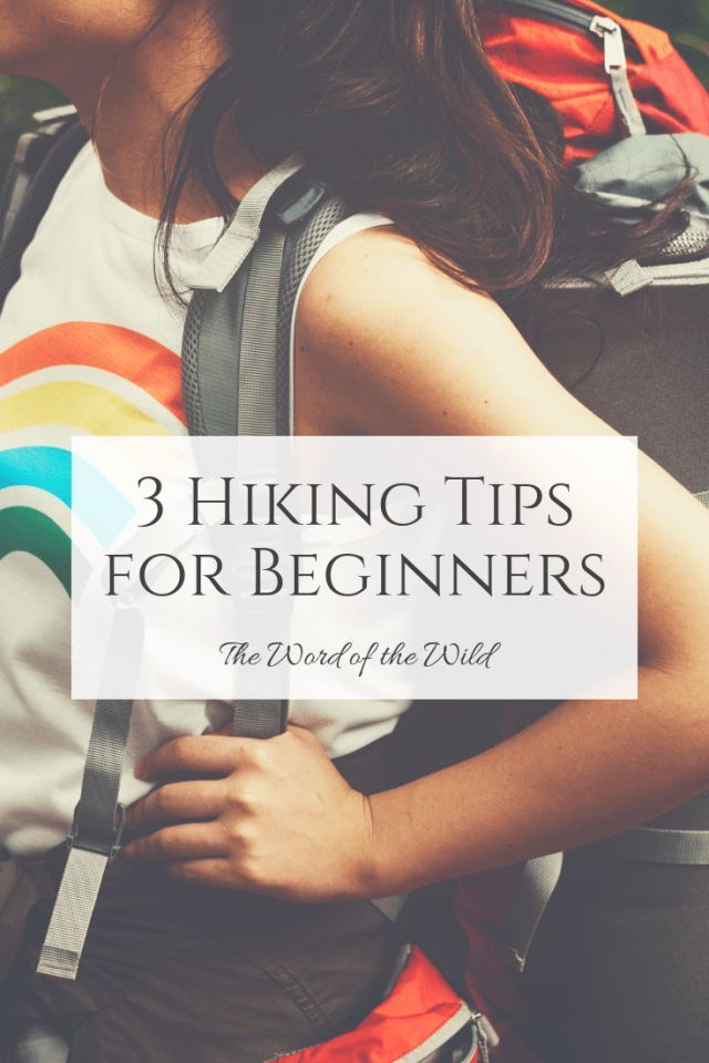 Photo of 3 Hiking Tips for Beginners – The Word of the Wild