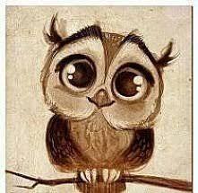 Znalezione Obrazy Dla Zapytania Słodkie Rysunki Ołówkiem Cute Owl Drawing Owls Drawing Owl Cartoon