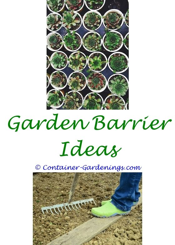 Planting Layout For Vegetable Garden | Garden Ideas, Container Gardening  And Cinder Block Garden