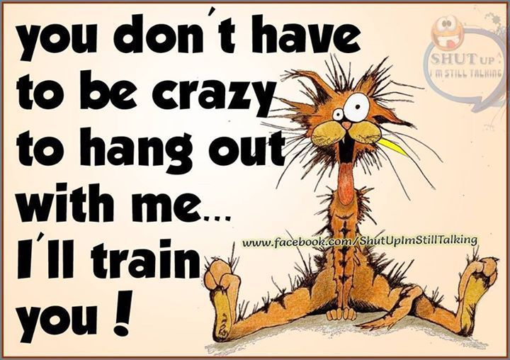 You Don't Have To Be Crazy To Hang Out With Me