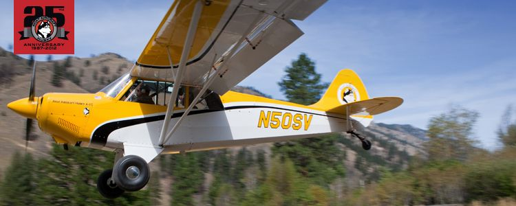 Aviat Husky 200HP FI Range - 800 Miles   Husky, Aircraft ...