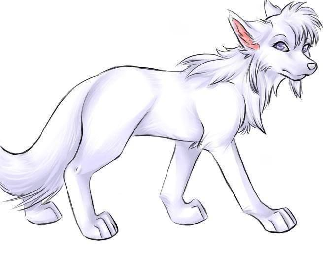 Pin By Gloria Stokely On Garden Pinterest Anime Wolf Drawings