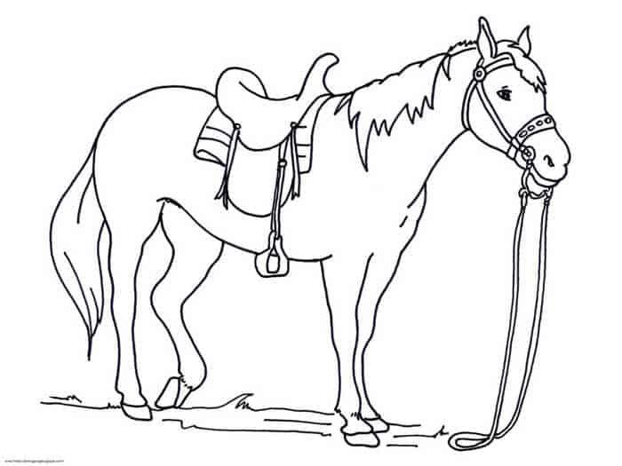 Ausmalbilder Pferde Kostenlos Ausmalbilder Pferde Zum Ausdrucken Ausmalbilder Pferde Malvorlagen Pferde