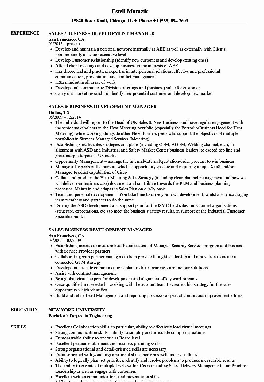 Business Development Manager Resume Unique Sales Business