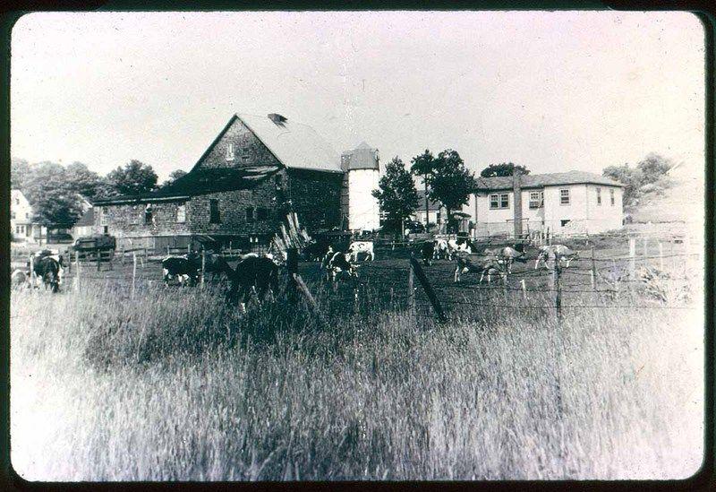 London Farm Denver Street Saugus Public Library Saugus Mass