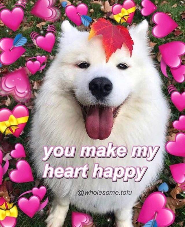 Pin by 💮🌸piink bobbatea🌸💮 on Love | Cute love memes, Cute ...