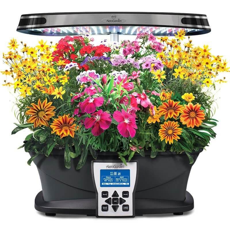Aerogarden Ultra Growing Plants Plants Grown In Water 640 x 480
