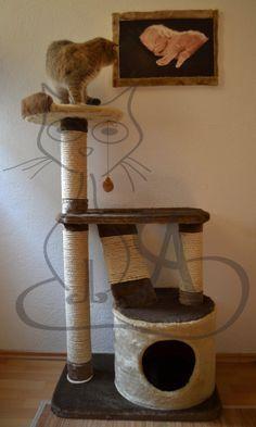 Resultado de imagen para gimnasio para gatos casero lo for Gimnasio casero