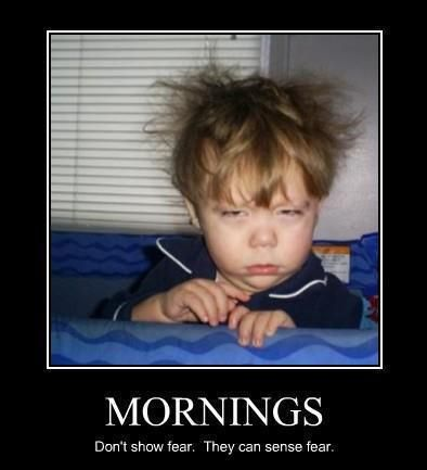 oh, morning