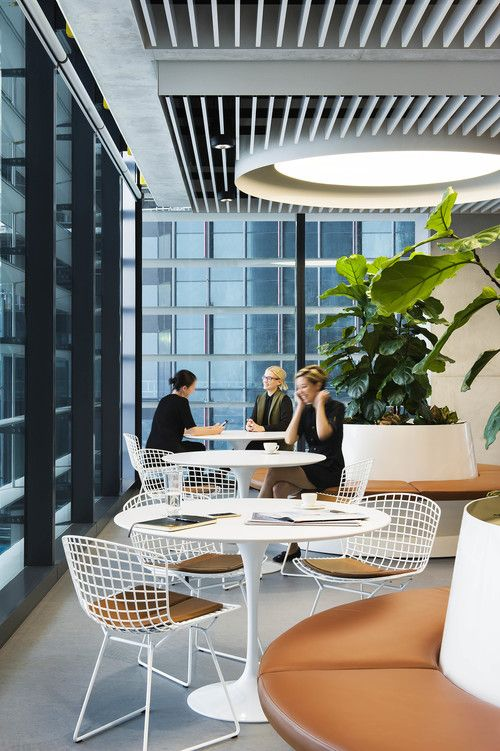 Swiss Re, Sydney by HASSELL | office | Pinterest | Asas, Escritorios ...