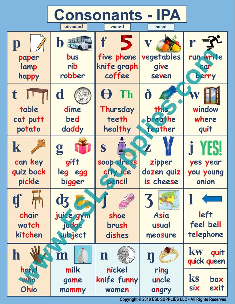 Consonants Ipa Consonant Phonetic Alphabet Ipa