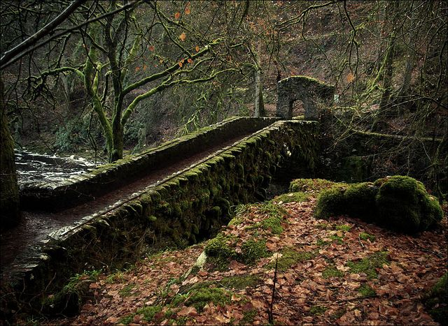 The Hermitage Bridge at Ossian's Hall over River Braan in a late autumn Hermitage at Birnam woods, Perthshire, Scotland