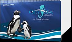 OdySea Aquarium annual passes