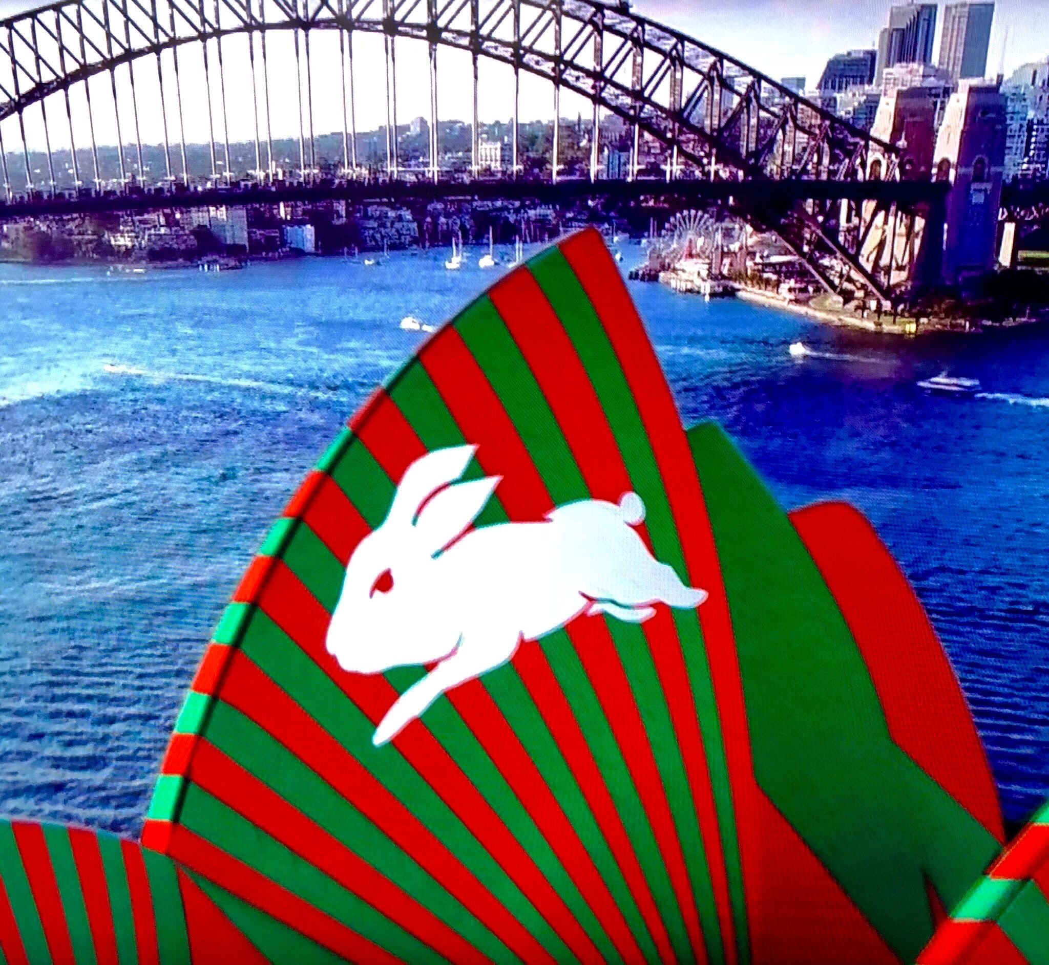 Pin By Jared Schnabl On South Sydney Rabbitohs Rabbits In Australia Vintage Dog Australian Football