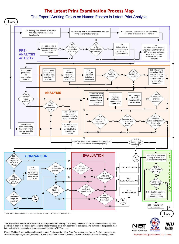 nij fingerprint flow chart - Career Flowchart