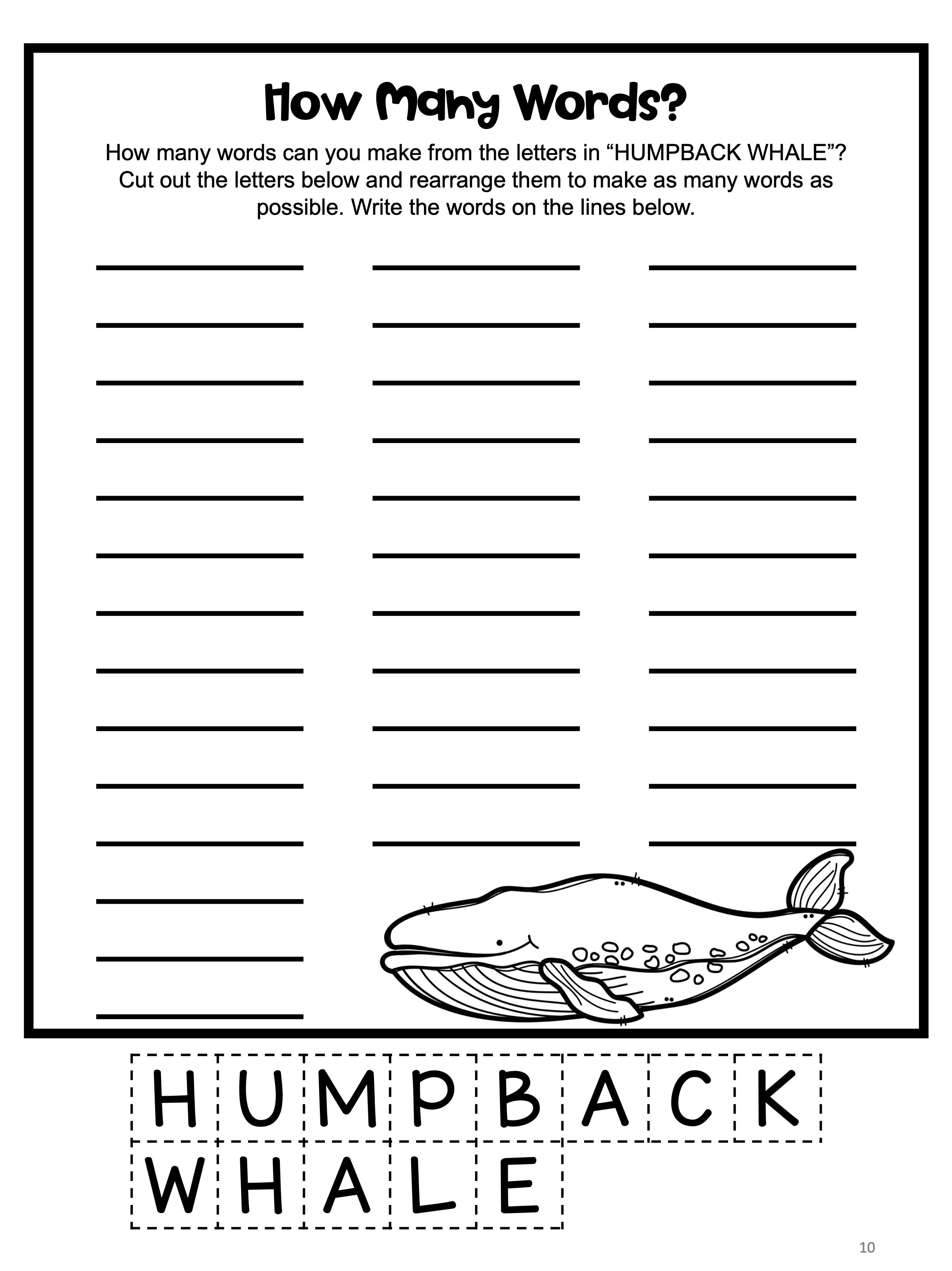 Ocean Animals Worksheets And Activities In